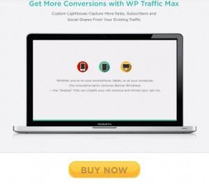 WP Traffic Max