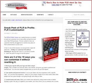 PLR to Profits - PLR Customization